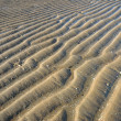 Stock Photo: Beach with textured sand