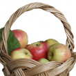 Royalty-Free Stock Photo: Apples in the basket