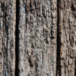 Royalty-Free Stock Photo: Brown wood texture