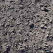 Soil background 1 — Stock Photo
