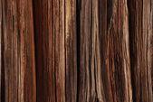 Wood texture4 — Stock Photo
