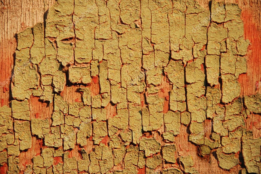Wood texture  Stock Photo #2640798