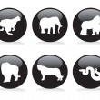 Six wild animals buttons — Stock Vector