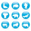 Wild animals blue buttons set 1 — Stock Vector