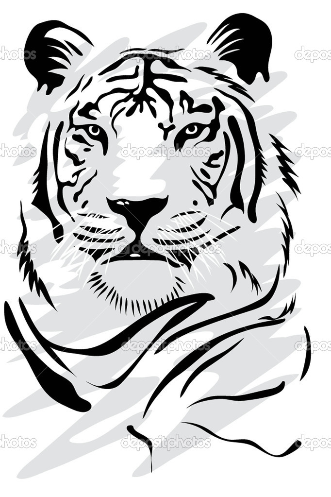 Illustration of a gorgeus white tiger — Vettoriali Stock  #2275069