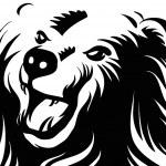 Angry bear — Stock Vector