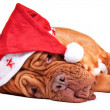 Is Santa tired? — Stock Photo