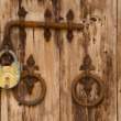 Old wooden door — Stock Photo #2208337