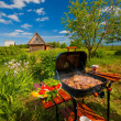 BBQ - Stockfoto