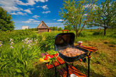 Un barbecue — Photo