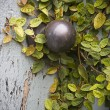 Secret Garden Doorknob - Stock Photo