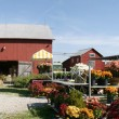 Farm Panorama with Floral Merchandise — Stock Photo