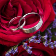 Foto Stock: Wedding Bands Nestled in Roses