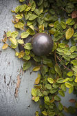 Secret Garden Doorknob — Stock Photo