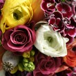 Colorful Bouquet — Stock Photo #2293755