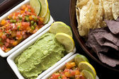 Salsa and Guacamole Appetizer — Stock Photo