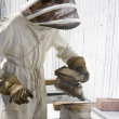 Beekeeper Smoking Hive - Stock Photo