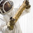 Beekeeper Inspecting Hive Frame - Stock Photo