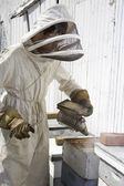 Beekeeper Smoking Hive — Stock Photo