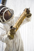 Beekeeper Inspecting Hive Frame — Stock Photo