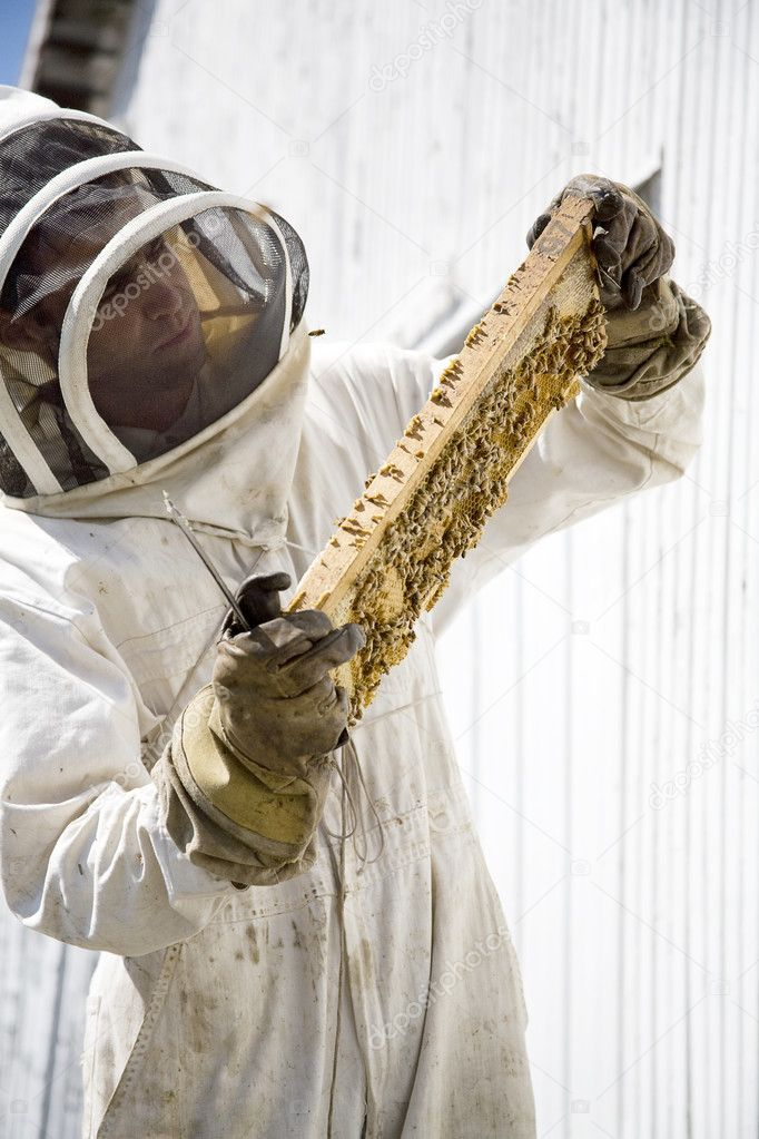 A beekeeper performing hive maintenance — Stock Photo #2413874