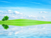 Reflection in the water — Stock Photo