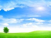 Solar landscape — Stock Photo