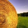 Hay bale — Stock Photo #2243999