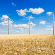 Royalty-Free Stock Photo: Wind farm