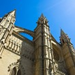 La Seu — Stock Photo