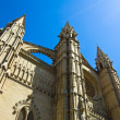 Stock Photo: La Seu