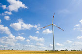 Wind farm 14 — Stock Photo