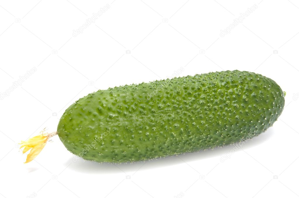 Green cucumber. Isolated on white background. — Stock Photo #2179540
