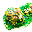 Green frog- jewelry box. — Stock Photo