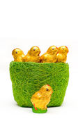 Easter chocolate chickens in grass-tidy — Stock Photo