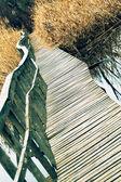 Floodplain pathway on water — Stock Photo