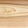 Royalty-Free Stock Photo: Ash wood