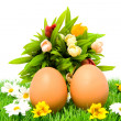 Two brown chicken eggs on grass — Stock Photo