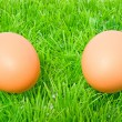 Two chicken eggs on grass — Stock Photo