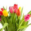 Bouquet of Dutch tulips — Stock Photo #2176358