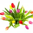Bouquet of colorful Dutch tulips — Stok fotoğraf