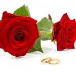 dvě červené růže a snubní prsteny — Stock fotografie