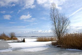 Snow landscape in Holland — Stock Photo