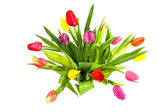 Bouquet of colorful Dutch tulips — Foto de Stock