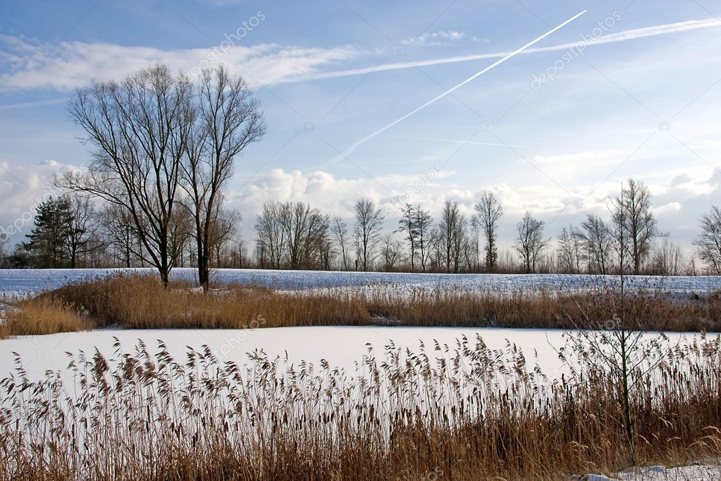 Snow landscape in the Netherlands — Stock Photo #2177113