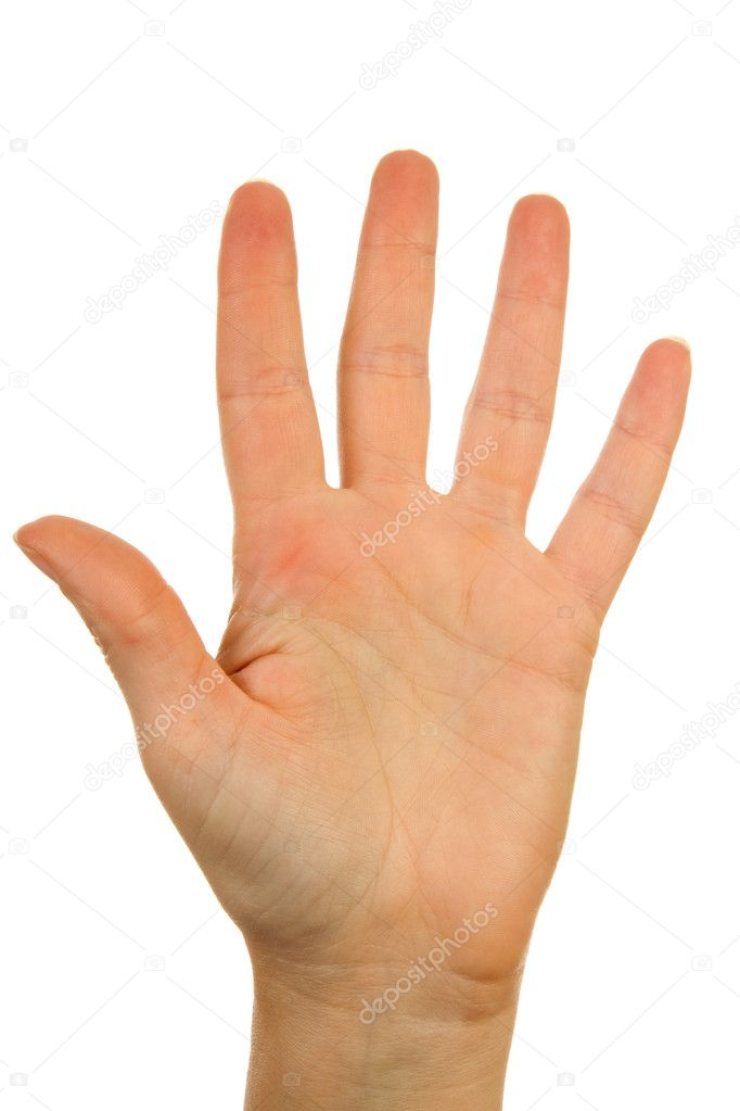 Woman's hand counting number 5 over white background  Stock Photo #2209876