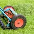 Mowing lawn — Stock Photo #2269634