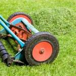 tondre la pelouse — Photo