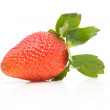 Stock Photo: One fresh strawberry