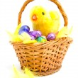 Cane basket with chocolate easter eggs — Stock Photo